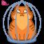 cat_cage