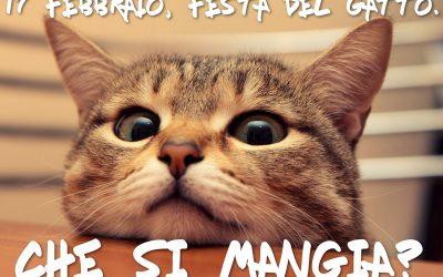 Festa del Gatto: 17 Febbraio