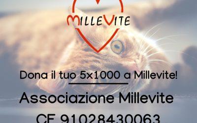 Dona il tuo 5×1000 a Millevite!