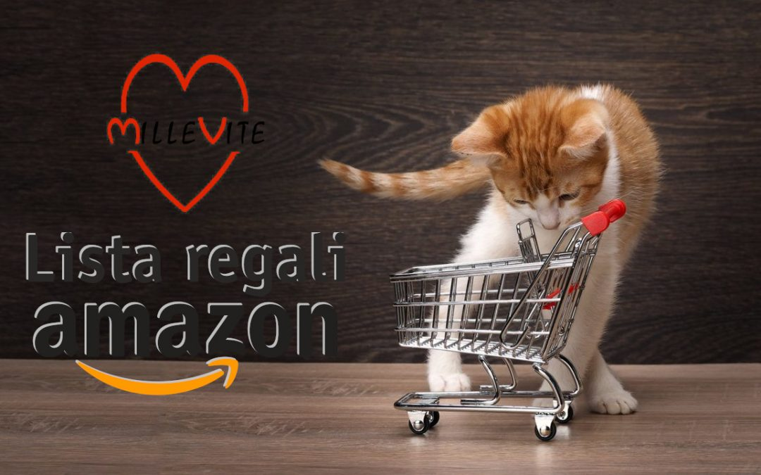 Lista regali Amazon per Millevite