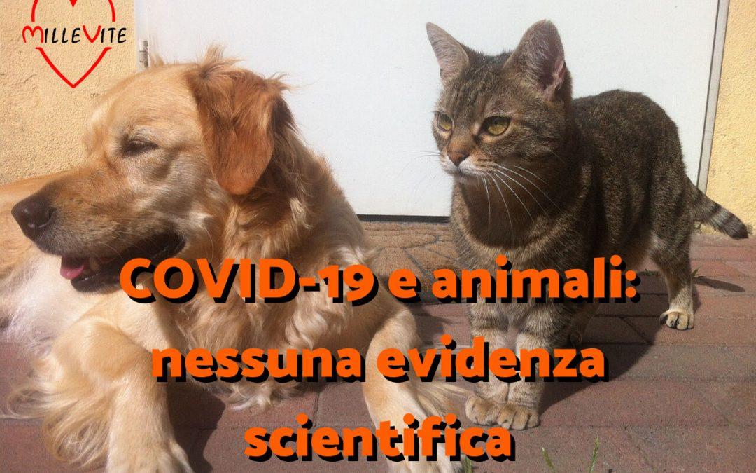 COVID-19 e animali da compagnia: nessuna reale evidenza scientifica